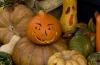Halloween: sculptarea bostanilor si a tartacutelor