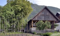 Apartament amenajat intr-un vechi hambar dintr-un orasel de munte Echipa OFIS Architects a realizat proiectul de