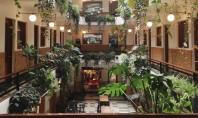 Incaperi cu atmosfera boema in Mexico City Cocotat la ultimul nivel al imobilului istoric Barrio Almeda