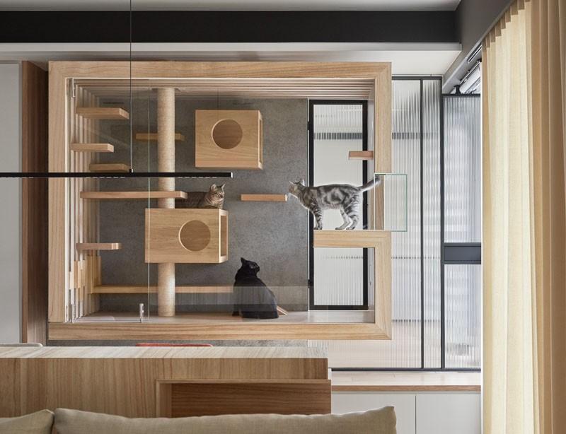 O casă modernă proiectată special pentru o familie de feline, instalată în living