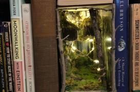 Magicele lumi în miniatură ascunse printre cărțile din bibliotecă