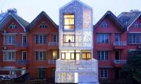 Casa insiruita cu anvelopanta dantelata si gradini verticale O gradina verticala protejata de o anvelopanta dantelata