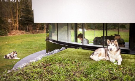 O casa cu perspective la 360° le permite proprietarilor sa-si poata urmari cainii. Moft sau utilitate?