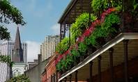 Tanar arhitect in cautarea succesului? Balcoanele generoase frumos decorate infrumuseteaza fatadele cladirilor le dau viata si