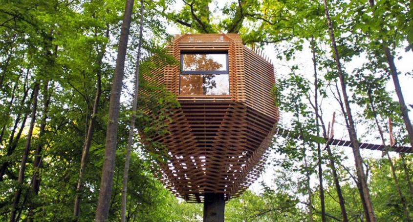 O casă în copac din Franța, care are un interior surprinzător