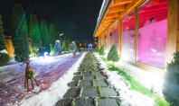 Cum întreții corect pavelele iarna Pavelele de calitate nu sunt afectate de temperaturile scazute nici de