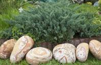 Pietre noi pentru grădini noi