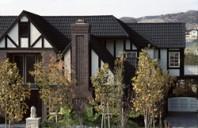 Profilul Heritage al tiglei GERARD beneficiaza de un discount de 20% pana la 30 aprilie
