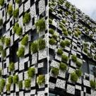 Casa propusa de Kengo Kuma protejata de vegetatie