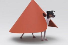 Arhitectii rasfata animalele de companie