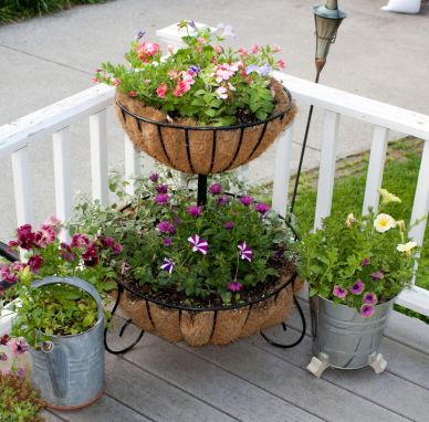 Rafturi si suporturi pentru plante. Pregatiri de primavara