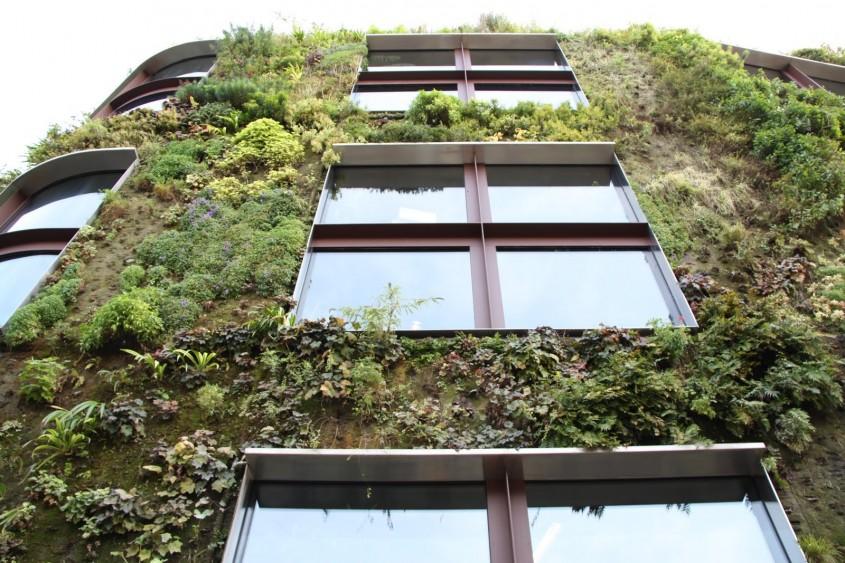 Gradini si sere pe verticala: spatiu castigat in favoarea vegetatiei