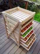 Spatiile de depozitare pentru legume si fructe. Conditii de pastrare peste iarna