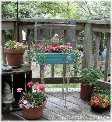 O jardiniera dintr-o colivie