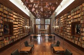 Biblioteca Jaime Garcia Terres din Mexico City