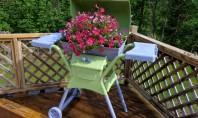 Ideea zilei: flori la... gratar