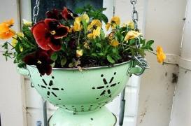 Recipiente de flori, pentru gradini inedite