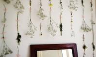 Flori si banda adeziva pentru niste pereti original decorati Fie ca este vorba de plante adevarate