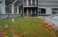 Cel mai usor acoperis verde