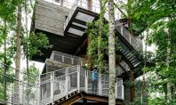 Casa din copac loc de studiu pentru cercetasi Biroul de arhitectura Mithum din Seattle a proiectat