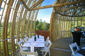 Restaurant suspendat in copacii din Noua Zeelanda