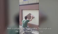 Recenzie Video Tencuiala Decorativa - Lungu Dorina, Piatra Neamt WEBER