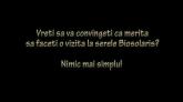 In vizita la Biosolaris, Producator de Plante (interiorul serelor)