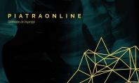 PIATRAONLINE - Placare exterioara cu Ardezie Panel Multi Stripes
