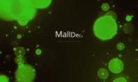 Cu MallDeco visele devin realitate