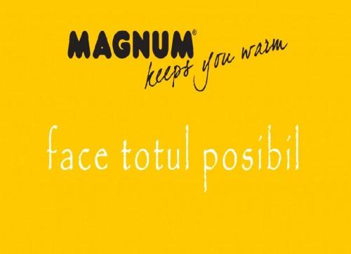 Magnum Heating MAGNUM