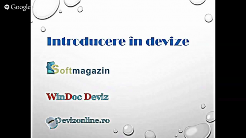 Introducere in devize Softmagazin
