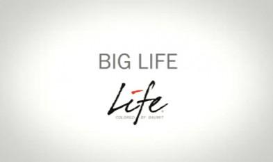 Culorile Baumit Life - Big Life